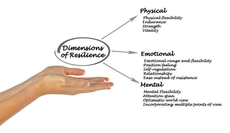 Resilient sein: Dimensionen und Faktoren aus der Resilienzforschung (englisch) - (© Dmitry / stock.adobe.com)